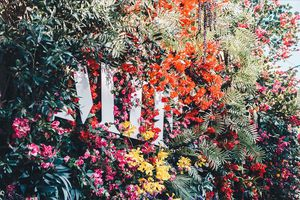 Wall of flowers with MIF logo sign